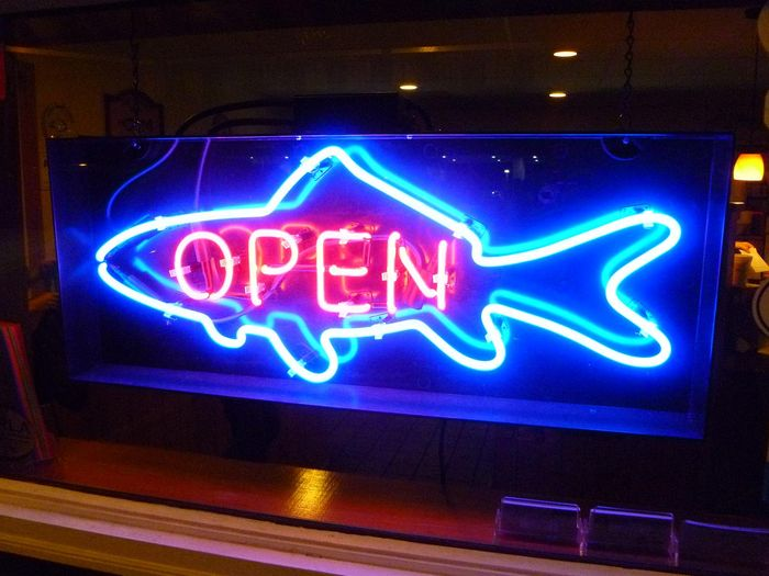 Gallery of lights mercury vapor fixtures others fish for Fish neon sign